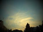 2014_1121AR.JPG